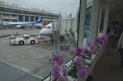 2021年4月 古宇利島へ(その1)~一路沖縄へ
