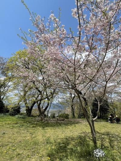 妹と弘法山公園へ