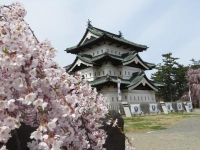 北東北の桜巡り ③ ~弘前城址公園の桜