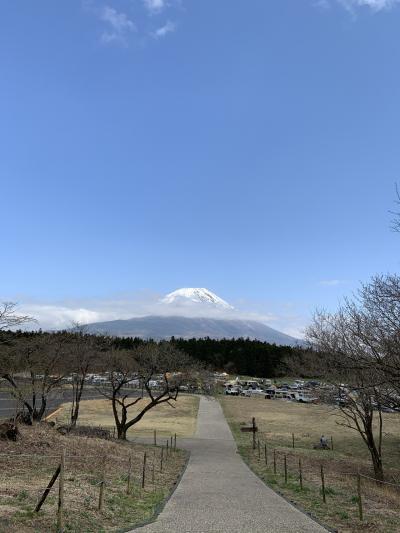 日帰りバスツアー「浅間神社五社巡り」で富士吉田のパワースポットを堪能する