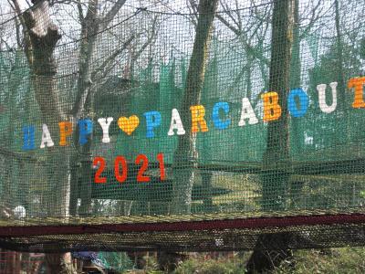 森の空中遊び『パカブ』ってなんぞや~?IN丸太の森
