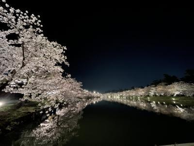 2021  弘前  桜旅 さくら・サクラ・桜 弘前公園 桜祭り 夜桜編  ライトアップ