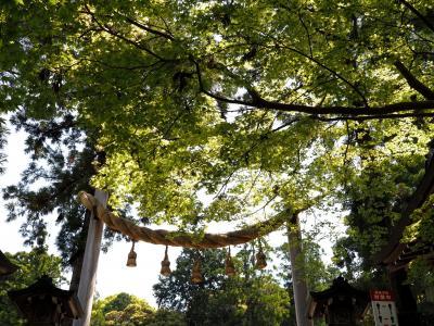 昇殿ご祈祷の大神神社