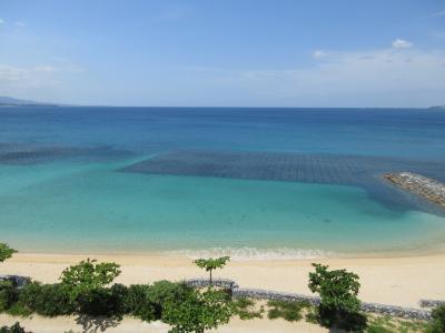 沖縄本島北部 路線バスであっちこっち一人旅(1)