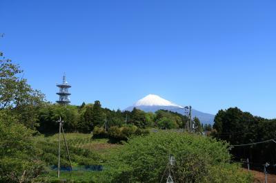 岩本山公園(静岡県富士宮市)へ・・・