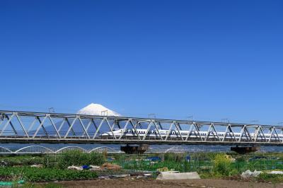 富士川河川敷(静岡県富士市)へ・・・