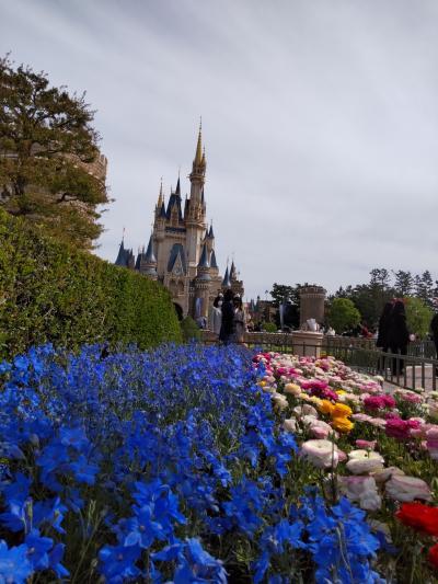 東京ディズニーランド&東京ベイ舞浜ホテル宿泊4月24日
