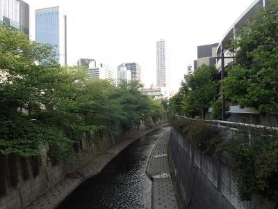 2021年4月・中野坂上~西新宿<神田川沿い~西新宿ディープゾーン>