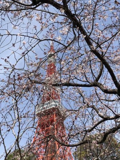 田町駅から歩いて東京タワー