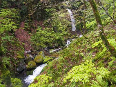 日帰り鳥取滝めぐり(3) 滝メグラーが行く225 法師ヶ滝で危うくやらかすところでした 鳥取市鹿野町