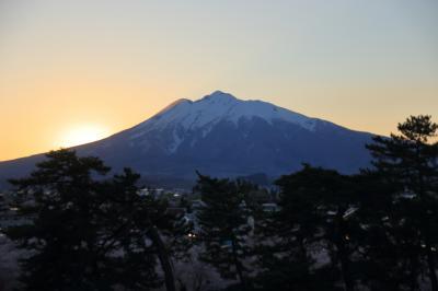 2021 弘前公園・夕方の桜