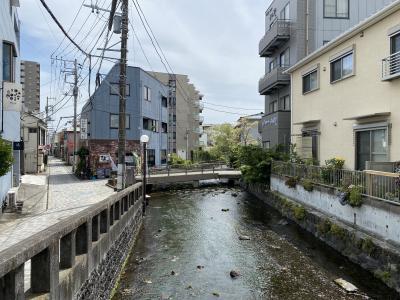 2021年4月 三島の街を散策