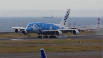 セントレアにANA A380亀ちゃんがやってきた