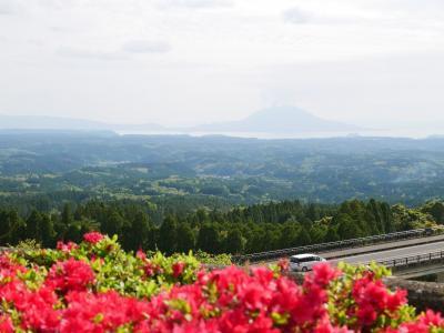 どこかにマイルの行き先は宮崎になったけど、鹿児島まで足を延ばして -2-