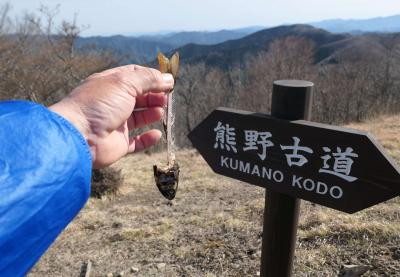 情報弱者が行く「奈良の山」 その2 伯母子山