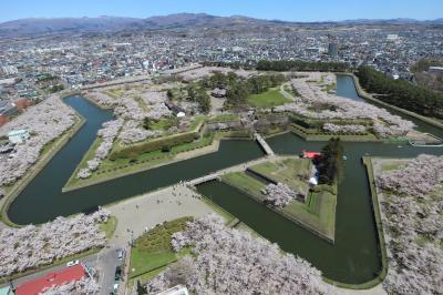2021春 函館市五稜郭(&北斗市)で満開の桜を堪能①
