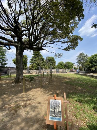 神社仏閣霊園巡りのコロナの一年、今日も行きます。徳川慶喜・渋沢栄一墓所ちょっとだけアメ横