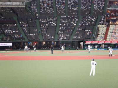 L APR 2021  メットライフドームでの野球観戦