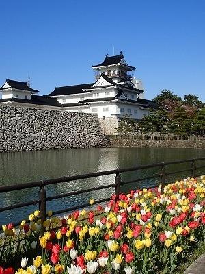 [3]観桜の富山. 松川ならず、舟川『春の四重奏(カルテット)』■最終日