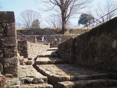 2021年初お泊り旅行は、浅草ちょいブラからの百名城・金山城を見に群馬・太田へ
