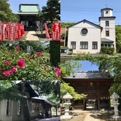 【2021年千葉】ご近所散策~真間&国府台~