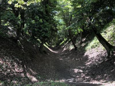 小田原城の遺構を訪ねて