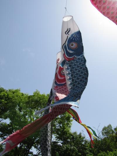 舞岡公園の鯉のぼりと五月人形