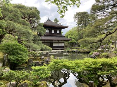 静かすぎる京都★GWの銀閣寺と哲学の道
