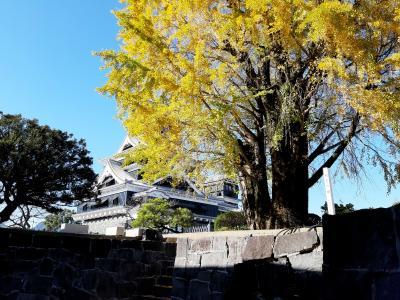 GoToトラベルで行く霧島神宮と熊本