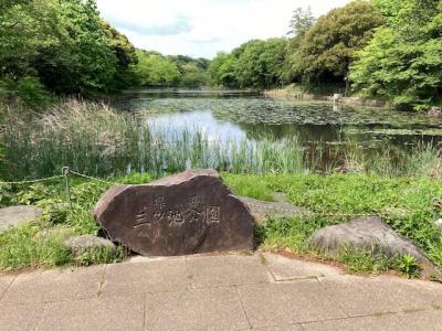 満開から一ヶ月、八重桜も含め完全に葉桜になった「県立三ツ池公園」でした。