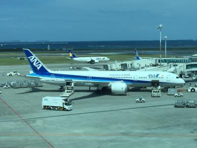 Flight NH462