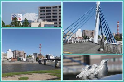 沼津・狩野川を散歩 2021.04.18