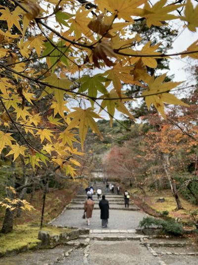 2020 京都紅葉狩りと姫路・明石のお城巡り2泊3日 - 京都2日目