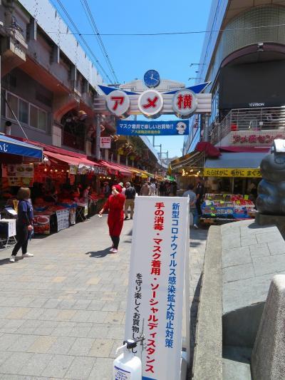 【東京散策115】都民は隣県流出?買い物で出掛けた上野アメ横界隈と上野恩賜公園を歩いてみた