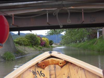 近江八幡の水郷めぐりとMIHO MUSEUM