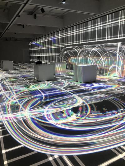 ドーミーイン八丁堀に宿泊して近場の温泉旅、 東京現代美術館でライゾマティクス展を鑑賞