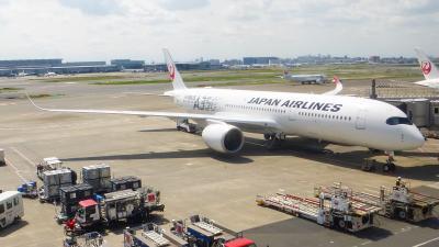JALタイムセール利用 横浜1泊2日旅【羽田空港 JALサクララウンジなど利用編】
