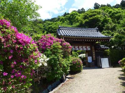 関西花の寺  !  船宿寺