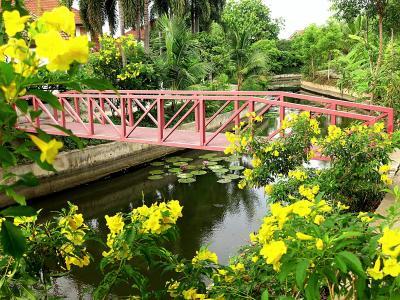 Chiang Mai生活145(5月)