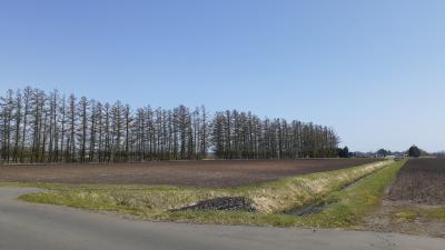 「AIR DOひがし北海道フリーパス」で行く北海道満喫の旅2021・05(パート3・3日目前編)