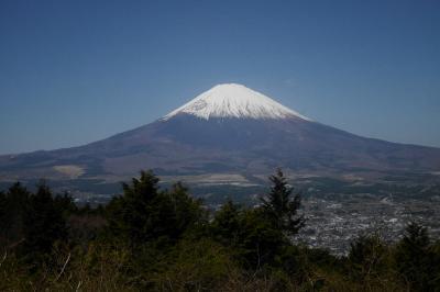 シニア夫妻2組が行く箱根の旅