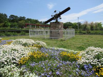 花が少なくて中途半端な時期だった服部緑地公園