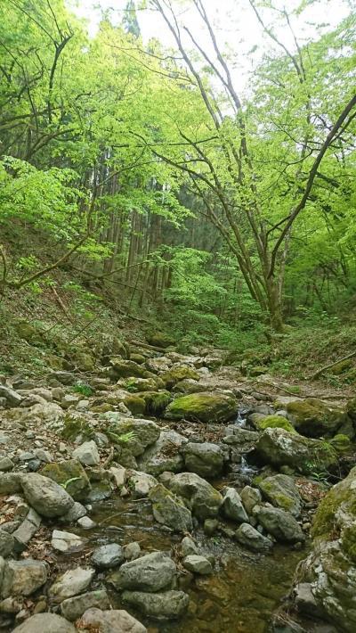 初めての御岳山(ロックガーデン)
