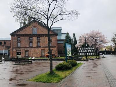 2021GW 5歳・2歳連れ出張追っかけ旅行①札幌