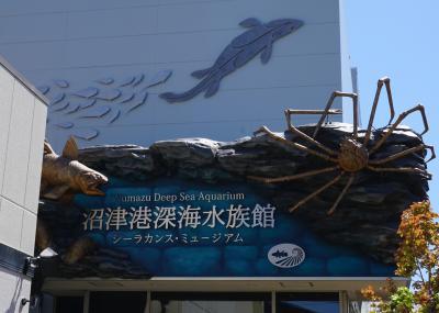 甥っ子たちとのGW(1)沼津港深海水族館他