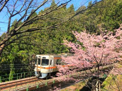 2泊3日 春の青春18きっぷで行く飯田線の旅【2日目】