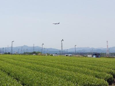 金子駅から茶業研究所経由で加治丘陵へ