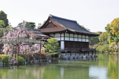 春爛漫の京都・近江桜旅(5)平安神宮から岡崎疏水、南禅寺までの桜散歩