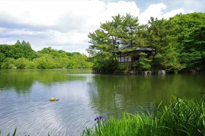 都会のオアシス 石神井公園を散歩
