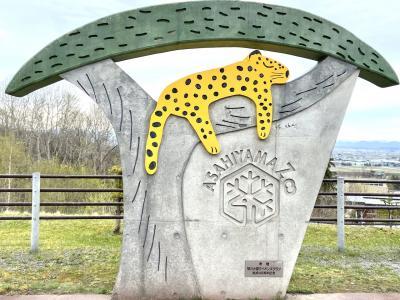 旭山動物園と旭川空港